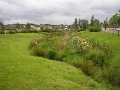 Swale in a housing estate